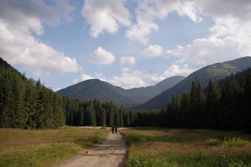 Tatry Zachodnie - Dolina Jarząbcza
