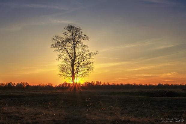 Pożegnanie słońca:)