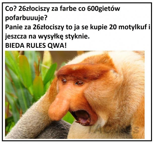 https://images81.fotosik.pl/1048/a7b1357cd6106964gen.jpg