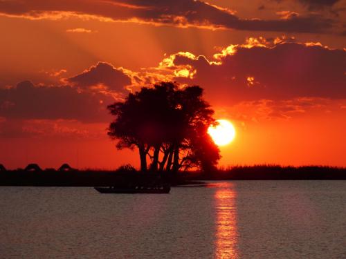 Zachód słońca nad Chobe