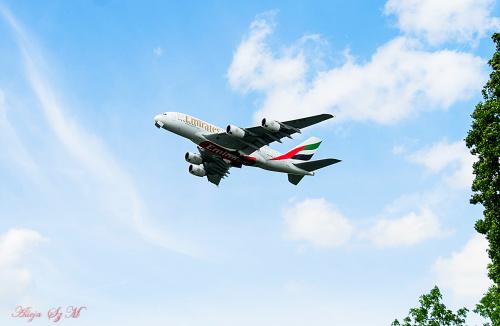 Samolot Emiratow Arabskich