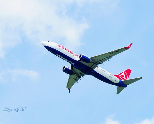 Samolot Tureckich Linii Lotniczych.