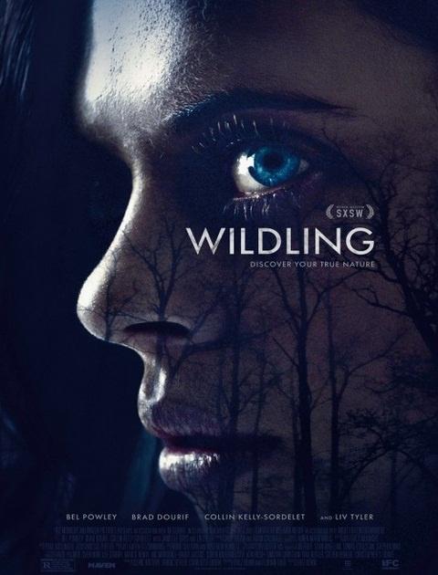 Wildling (2018) PL.SUBBED.480p.WEB-DL.XViD.AC3-MORS / Napisy PL