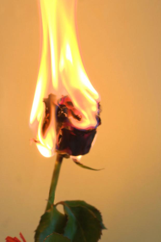 Ponownie ogień