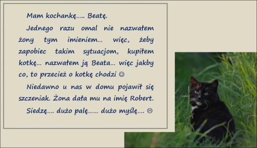 trochę nietypowo, ale tak się uśmiałam, że przemycę z kotem na Fotosik :)