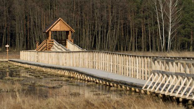 Jedna z wież widokowych na ścieżce Czachary w Poleskim Parku Narodowym.