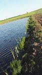 images81.fotosik.pl/141/0b899f3ce5e753f1m.jpg