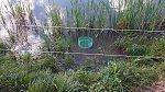 images81.fotosik.pl/214/02dbdbeeb1f82a08m.jpg