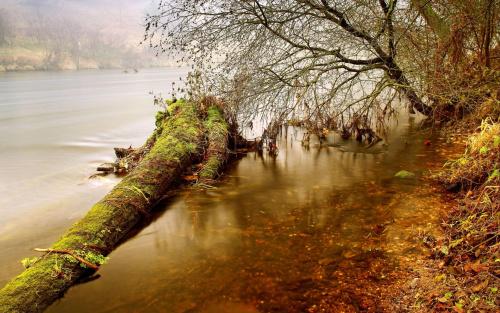 W zakolu rzeki