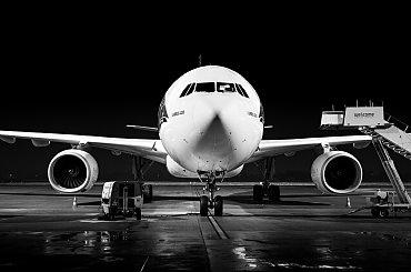Stoi i grzecznie czeka na swój lot :)