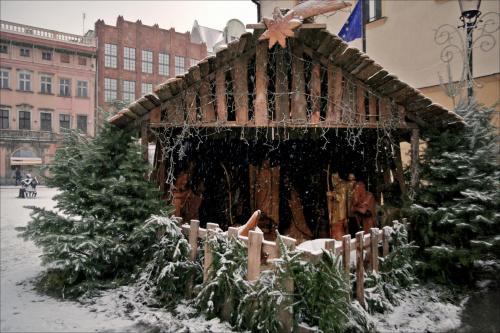 Żary- szopka bożonarodzeniowa przed ratuszem (szaro i pada śnieg)