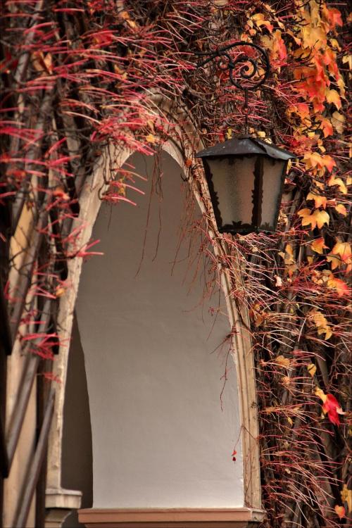 nie ma to, jak jesień :)