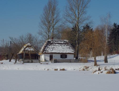 domek Myszy09 w wersji zimowej z pozdrowieniami