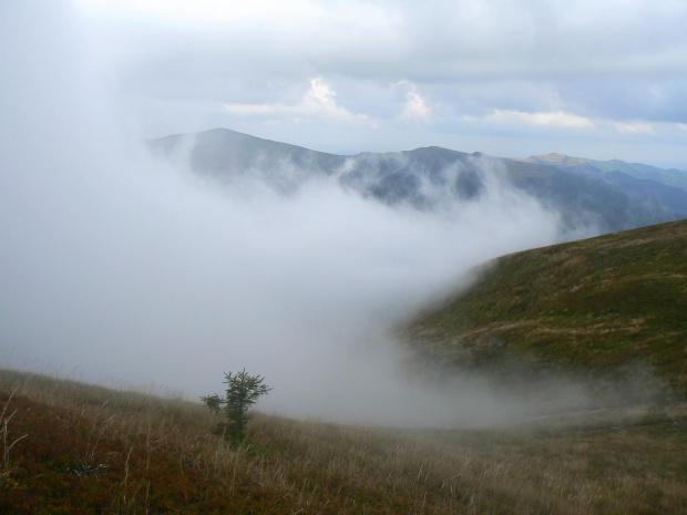 Puchowe chmury w Bieszczadach
