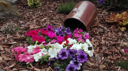 Dekoracyjne Wiadro Z Kwiatami Sposob Na Oryginalna Doniczke Kreatywne Diy
