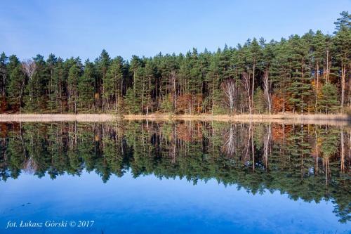 Magia lobeliowego zwierciadła #lobeliowe #jezioro #krajobraz #pejzaż #jesień