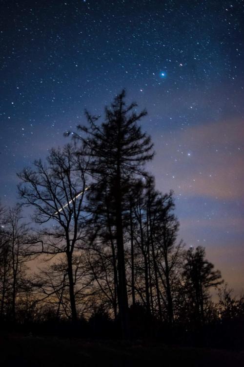 Z nocy spadających gwiazd to tylko lecący samolot, przestrzelona ostrość i rozjechane gwiazdy :)