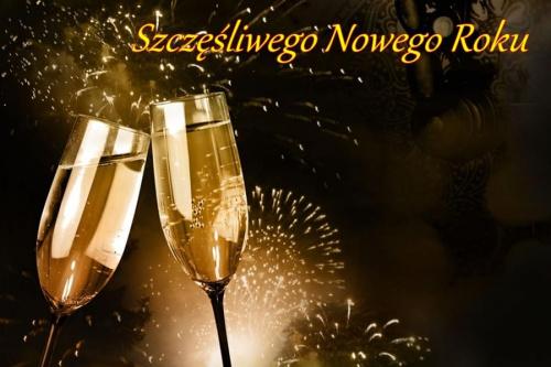 Niech ten Nowy rok pozbawiony będzie smutku i przykrości a składa się z samych sukcesów i radości. niech będzie pełen miłości i zrozumienia . Niech się spełnią noworoczne życzenia .