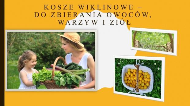 www.polskieplecionkarstwo.pl