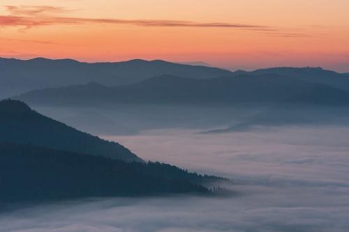 Morze mgieł