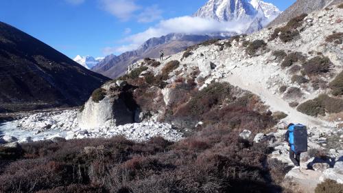 W drodze do Dingboche 4350m. Szlak jest cały czas dobrze utrzymany bez ryzyka, że się zabłądzi.