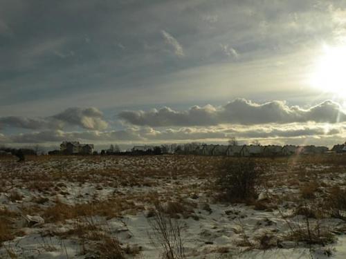Łąka zima.
